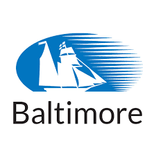 BALTIMORE LIFE INSURANCE COMPANY REVIEW 2020