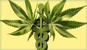life Insurance Marijuana users