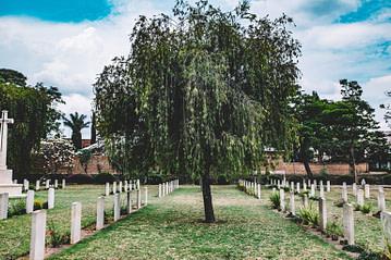 Top Burial Insurance Companies Reviewed